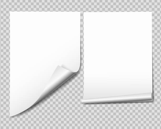 illustrazioni stock, clip art, cartoni animati e icone di tendenza di set of white sheet of paper with bent corner, isolated on transparent background - vector - rotolo