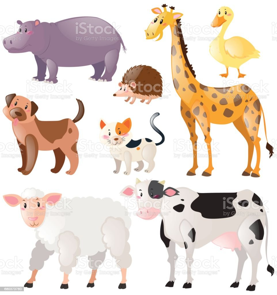 Set of wild animals royalty-free set of wild animals stock vector art & more images of animal