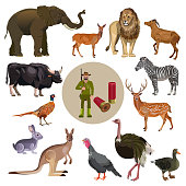 Set of wild animals with hunter. Vector illustration isolated on the white background