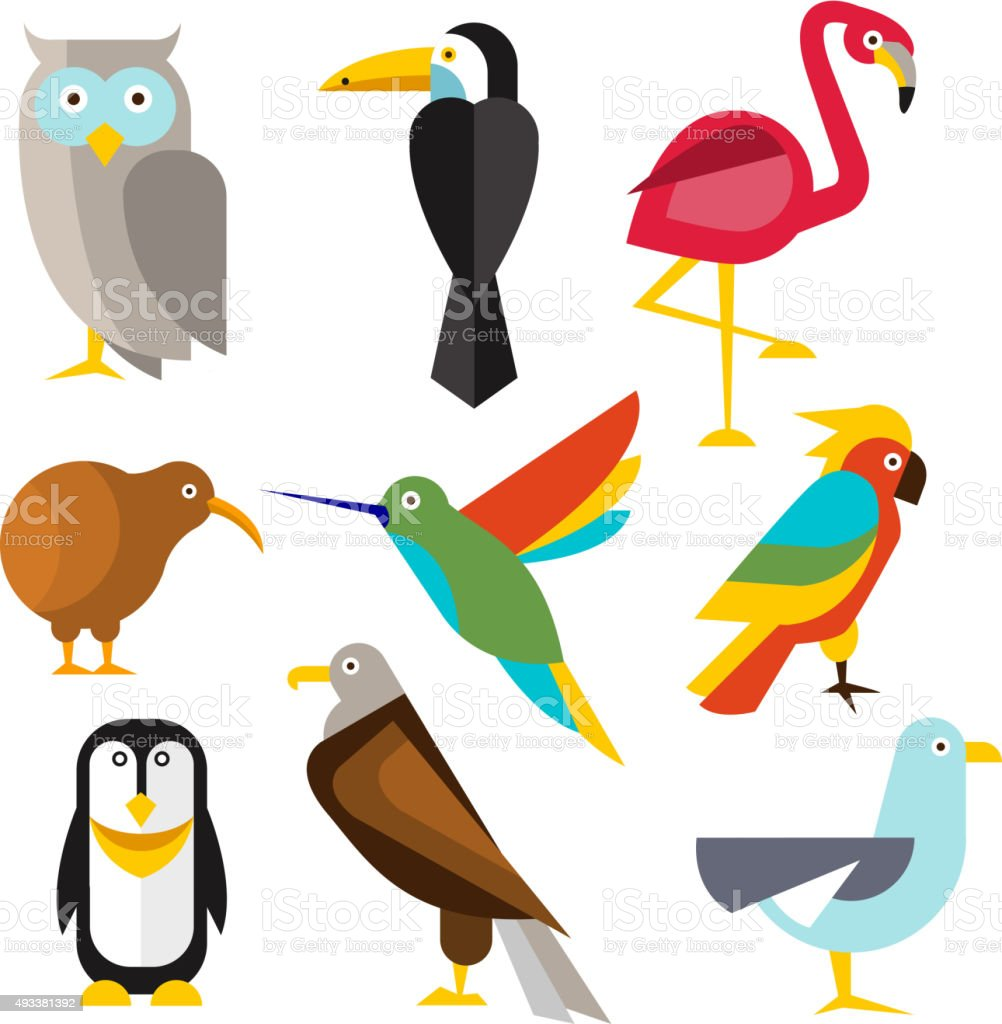 Set of Wild Arctic, Forest and Tropical Birds in Flat vector art illustration