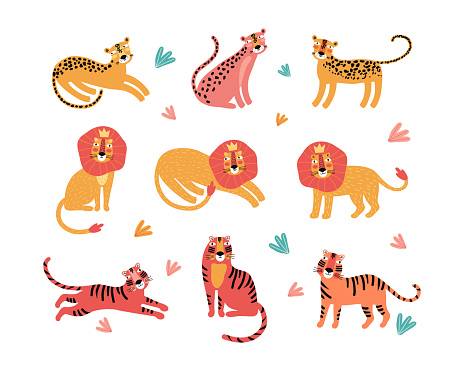 Set of wild cats, leopard, lion, tiger. Flat vector illustration. Wild exotic animals. Set for animation. Cute animal characters for design of printed material and t-shirt, poster, postcard, sticker