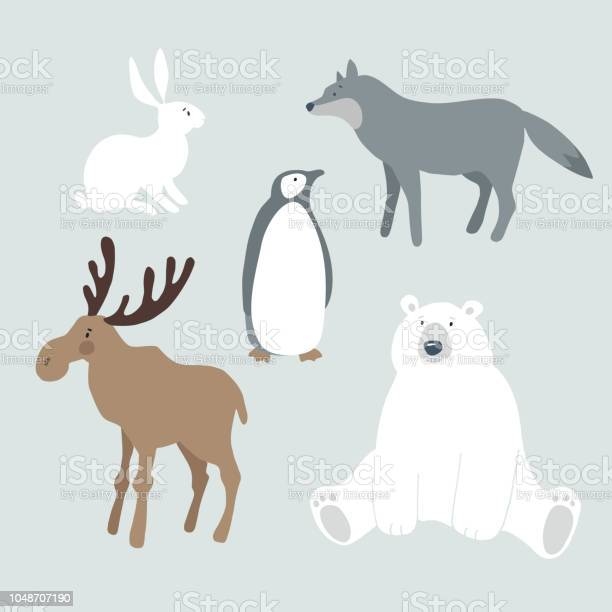 Set of wild winter animals and bird cute polar bear moose wolf hare vector id1048707190?b=1&k=6&m=1048707190&s=612x612&h=vy6tmcx envfkfalukj7jy5odbtsln3dbttxzhvlcgg=