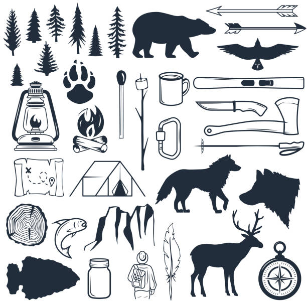 Set of wilderness silhouettes. Hand drawn camping and hiking elements. Collection for summer camp outdoors. Labels, emblems, logos, badges. Travel and recreation in outdoor camp Set of wilderness silhouettes. Hand drawn vector camping and hiking elements. Collection for summer camp outdoors. Labels, emblems, logos, badges. Travel and recreation in outdoor camp wilderness stock illustrations