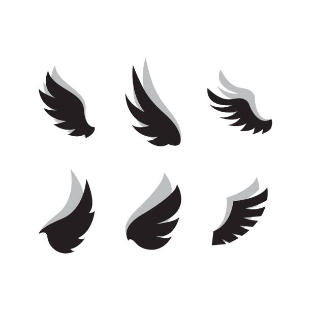 Set of wing icon design template vector Set of wing icon design template vector aviation and environment summit stock illustrations