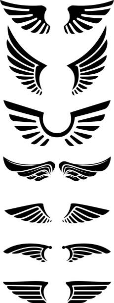 set of wings icons. design elements for label, emblem, sign. - animal wing stock illustrations