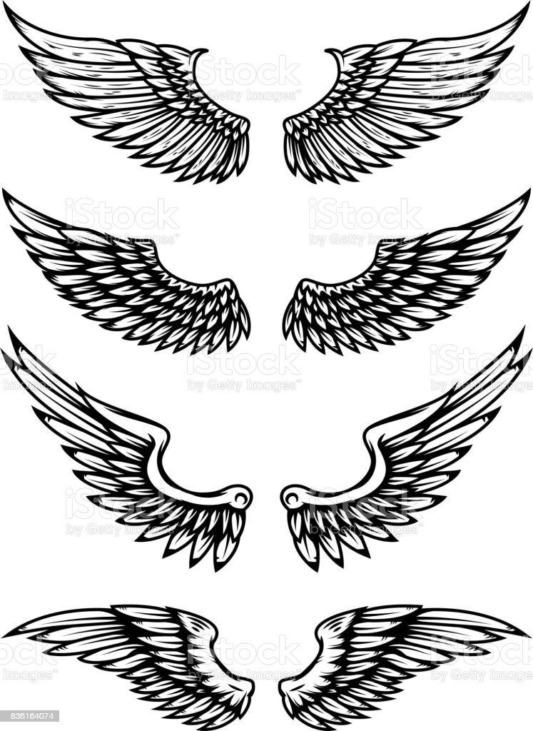 Conjunto de ilustración de alas aislada sobre fondo blanco. Elementos de diseño para la etiqueta, emblema, signo. - ilustración de arte vectorial
