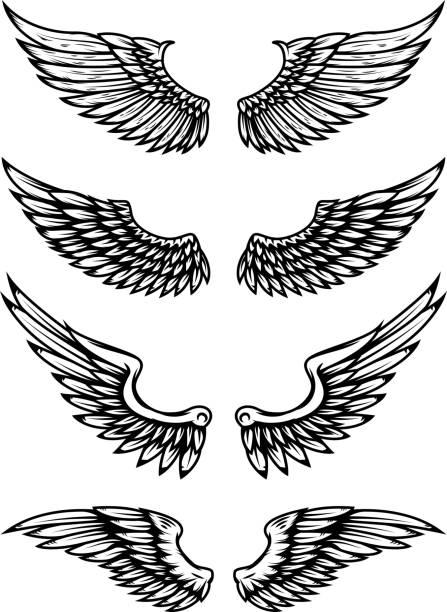 satz der flügel illustration isoliert auf weißem hintergrund. design-elemente für label, wahrzeichen, zeichen. - engel tattoos stock-grafiken, -clipart, -cartoons und -symbole