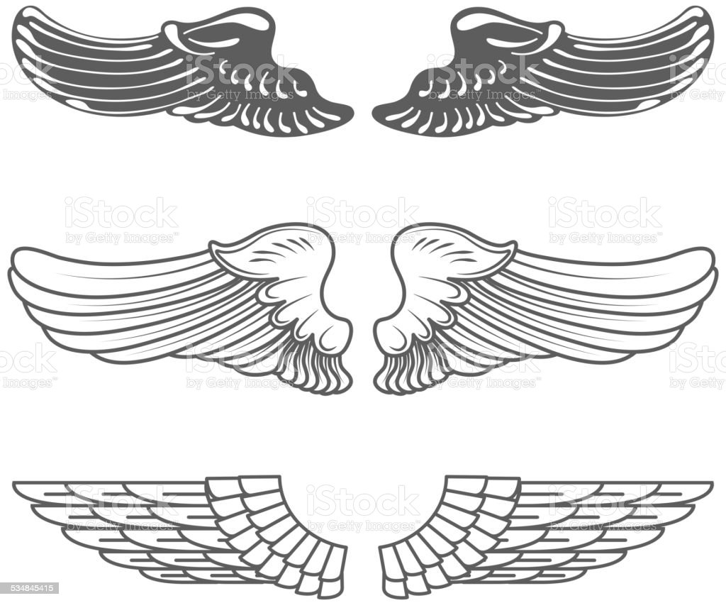 Set of wings isolated on white vector art illustration