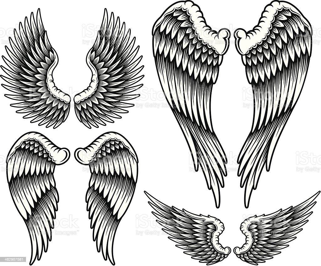 Set of Wings vector art illustration