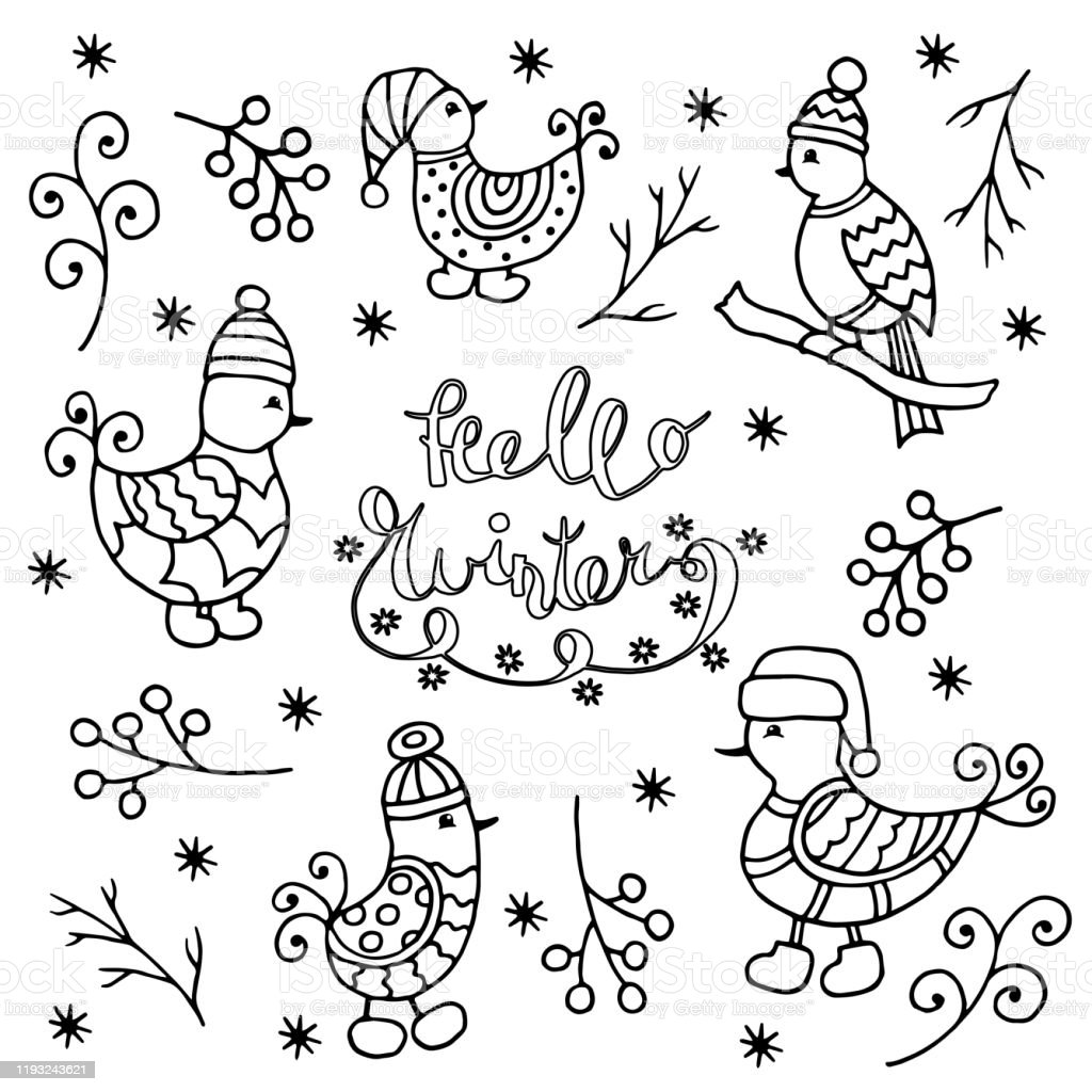 Set Of Winter Birds Coloring Page Stock Illustration - Download Image Now