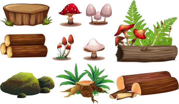 a set of wood element - wood texture stock illustrations