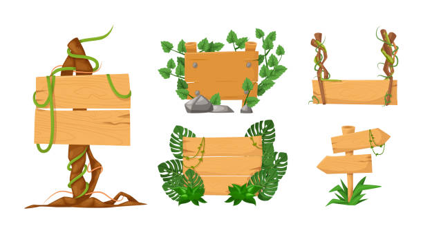 Set of wooden banners with liana branches and rainforest tropical leaves Set of wooden banners with liana branches and rainforest tropical leaves. Game wooden empty boards isolated jungle cartoon elements games gui interface vector illustration adventure borders stock illustrations