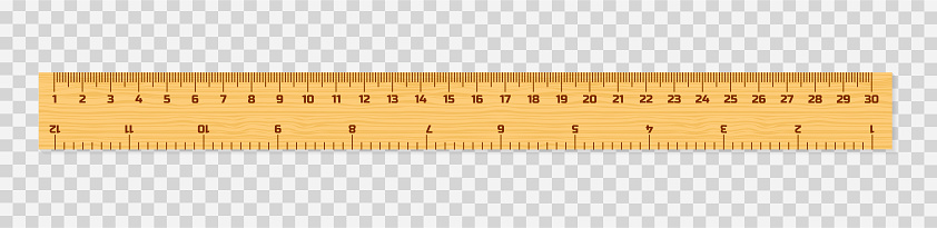 Set of wooden rulers 15, 20 and 30 centimeters with shadows isolated on white. Measuring tool. School supplies. Vector illustration.