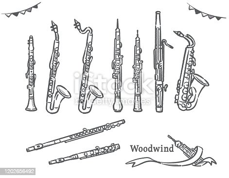 Set of woodwind instruments. Vector illustration.