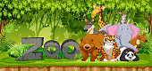 Set of zoo animals in jungle illustration