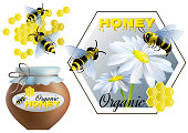 Set on theme of honey and beekeeping. Vector illustration.