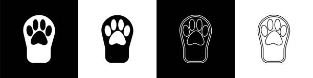 Set Paw print icon isolated on black and white background. Dog or cat paw print. Animal track. Vector Set Paw print icon isolated on black and white background. Dog or cat paw print. Animal track. Vector. cute wolf stock illustrations