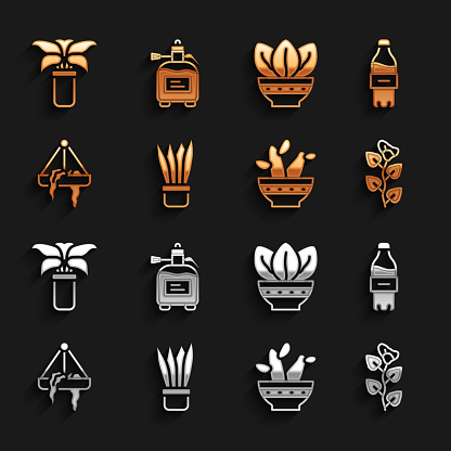 Set Plant in pot, Bottle of water, Ivy branch, Cactus peyote, hanging, Exotic tropical plant and Garden sprayer for fertilizer icon. Vector