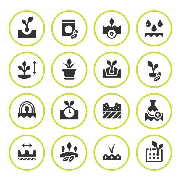 Set round icons of seed and seedling vector art illustration