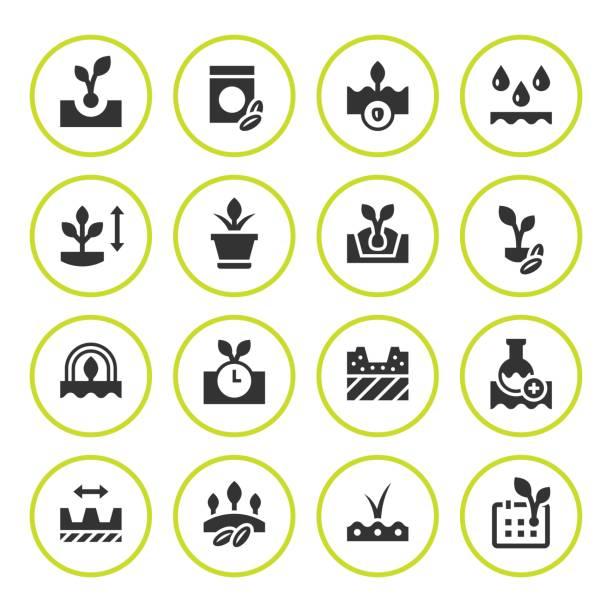 ilustraciones, imágenes clip art, dibujos animados e iconos de stock de sets iconos redondos de semilla y plántula - calendario de naturaleza