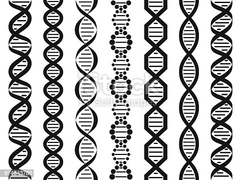 DNA set, seamless pattern, seamless lines Vector illustration