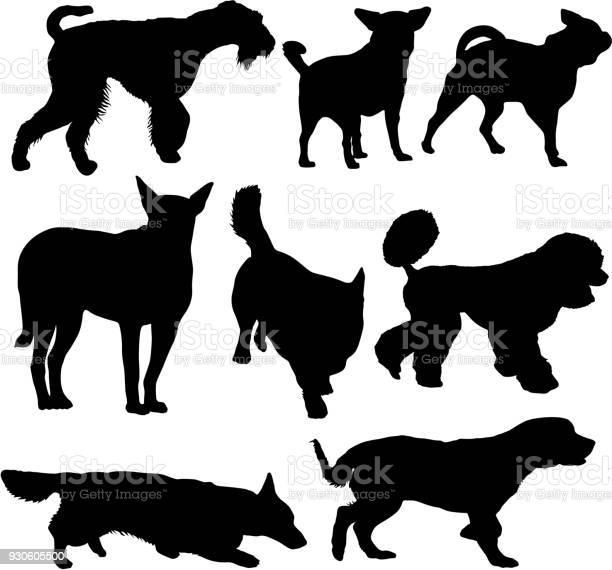 Set silhouette black dog on a white background vector id930605500?b=1&k=6&m=930605500&s=612x612&h=9ts15z1cs1rfykc0tm4syumsg0srqu xautnmerkwg0=