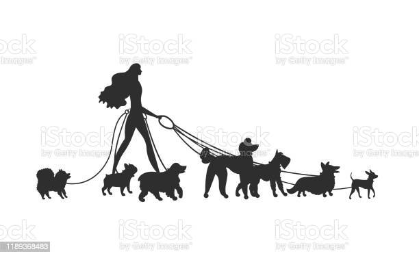 Set silhouette icons of dogs and girl vector id1189368483?b=1&k=6&m=1189368483&s=612x612&h=pak0raf7fvjgkr8p8bohcipq0hr7s8wgkpki tbptjw=