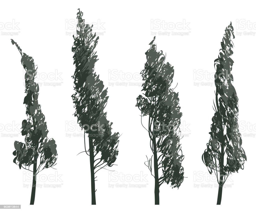 Set sketches of trees isolated on white background - illustrazione arte vettoriale