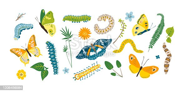 Set spring and summer colorful butterflies and caterpillar. Different cute silhouettes on white background. For festive card, logo, children, pattern, tattoo, decorative, concept. Vector illustration.