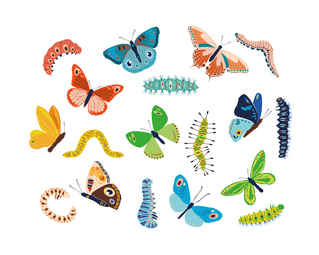 Set spring and summer colorful butterflies and caterpillars. Different cute silhouettes on white background. For festive card, logo, children, pattern, tattoo, decorative, concept. Vector illustration