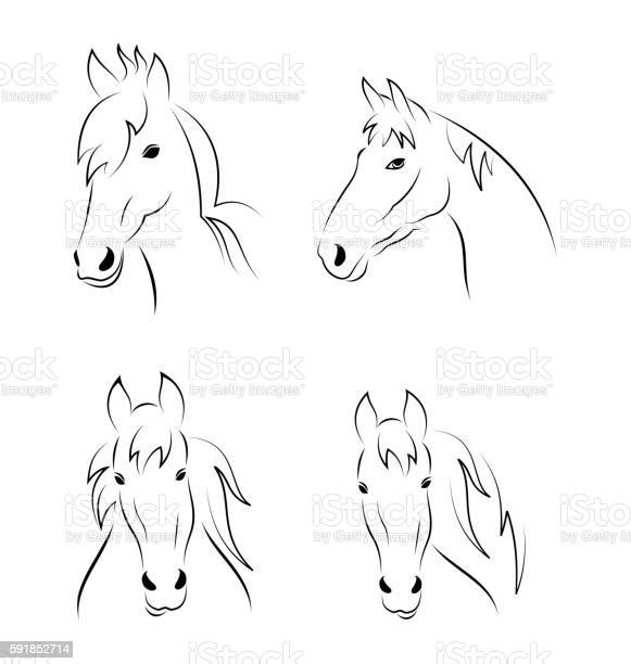 Set symbols outline head horse isolated on white background vector id591852714?b=1&k=6&m=591852714&s=612x612&h=eawz h3sul3xjpsimlidepnnmhef53l jhfbvz6krv4=