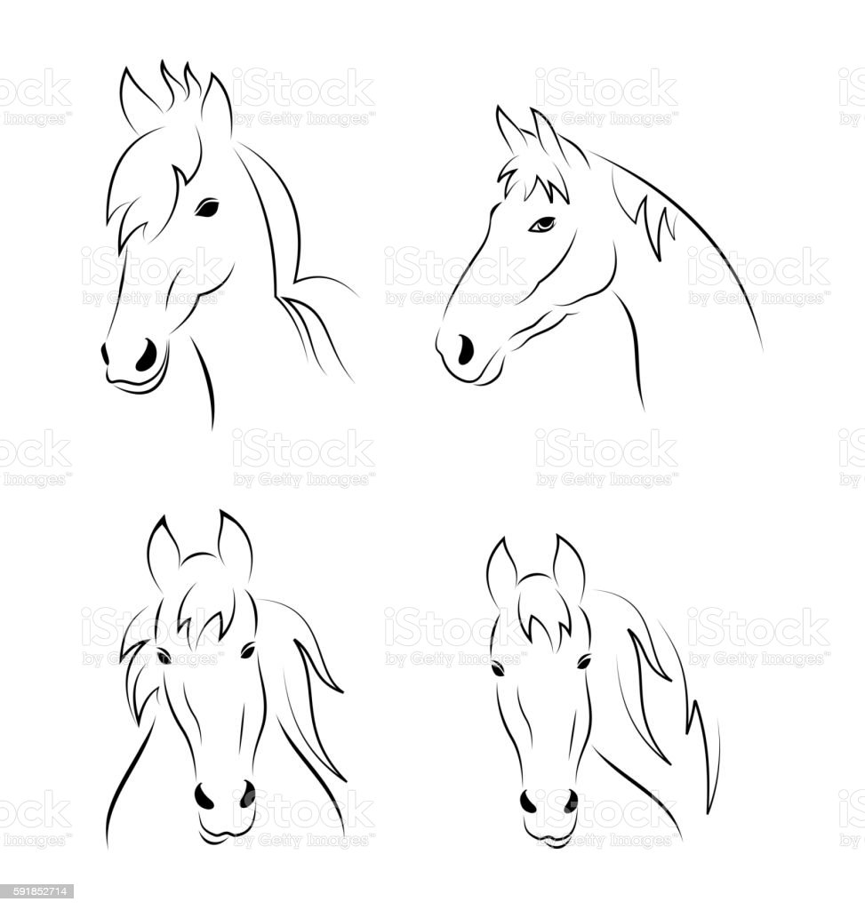 Set symbols outline head horse isolated on white background vector art illustration