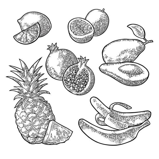 illustrazioni stock, clip art, cartoni animati e icone di tendenza di set tropical fruits. pineapple, lime, banana, pomegranate, maracuya, avocado. - illustrazioni di passiflora