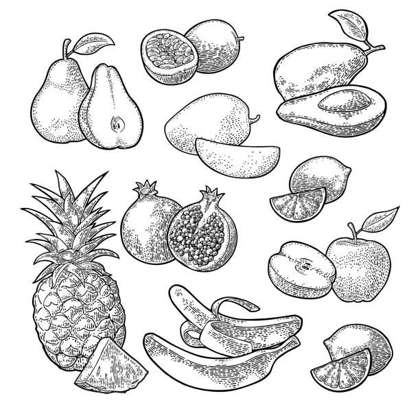 illustrations, cliparts, dessins animés et icônes de mettre les fruits tropicaux. ananas, citron vert, banane, grenade, maracuja, avocat. - fruit de la passion