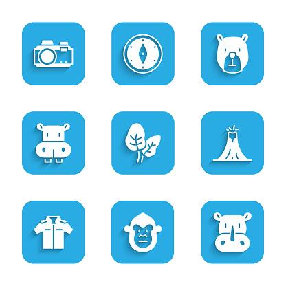 Set Tropical leaves, Monkey, Rhinoceros, Volcano eruption, Shirt, Hippo or Hippopotamus, Bear head and Photo camera icon. Vector