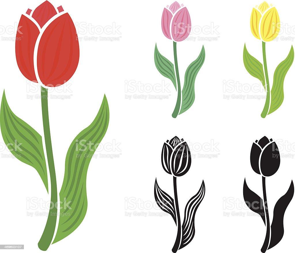 Set tulip flower vector art illustration