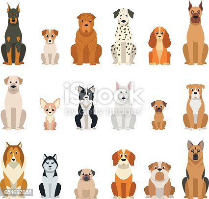 Set vector dogs