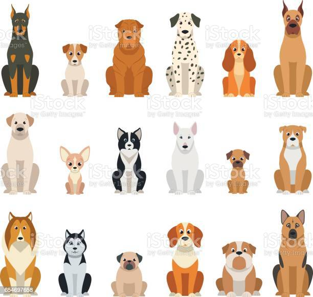 Set vector dogs vector id654697658?b=1&k=6&m=654697658&s=612x612&h=0wtxjcimrskwziknjaya1zosi4icg7gbsw4k4ffd0 4=