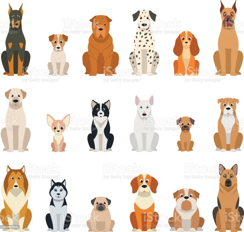 Set vector dogs vector art illustration