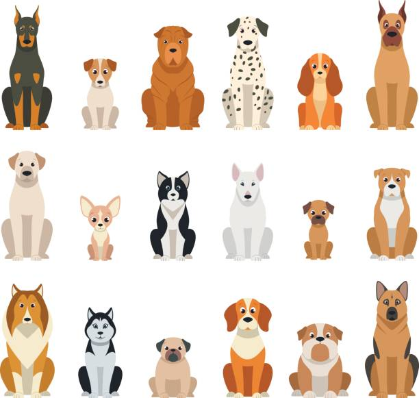 set vector dogs - dog stock illustrations, clip art, cartoons, & icons