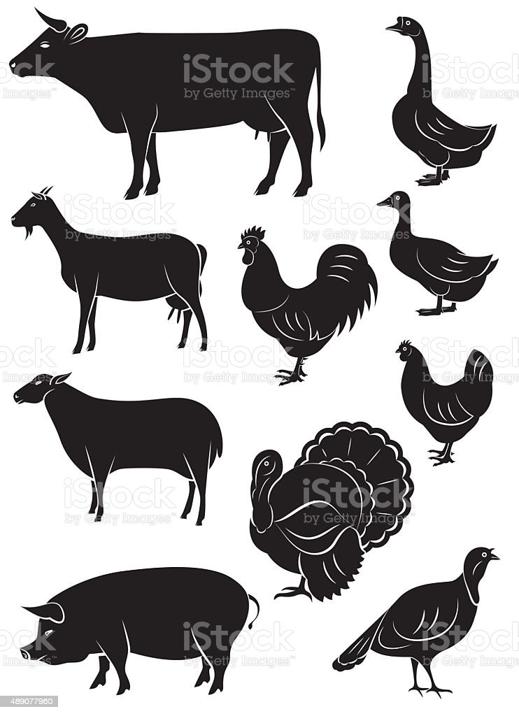 set vector icons with farm animals and birds vector art illustration