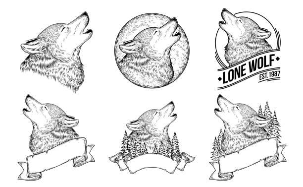 illustrazioni stock, clip art, cartoni animati e icone di tendenza di set vector illustrations of a howling wolves - lupo