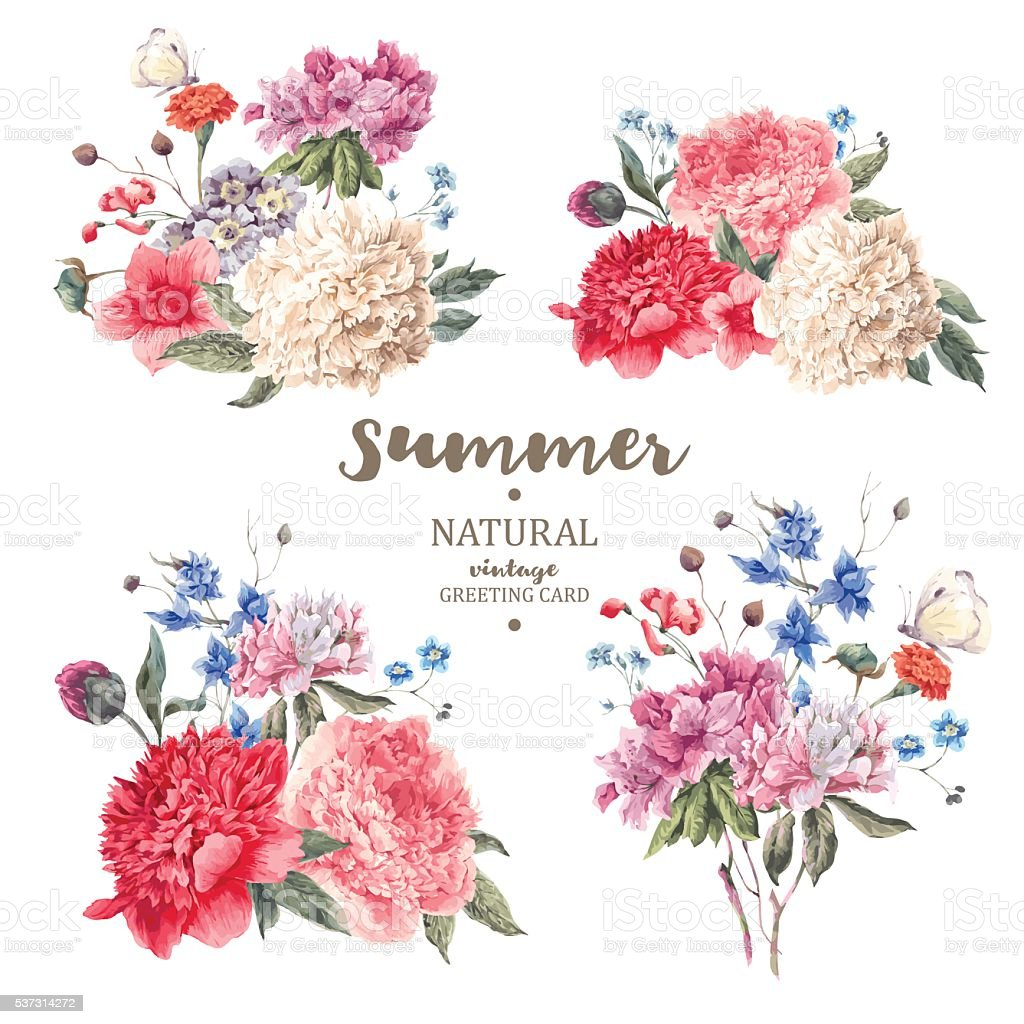 Set vintage floral vector bouquet of peonies vector art illustration