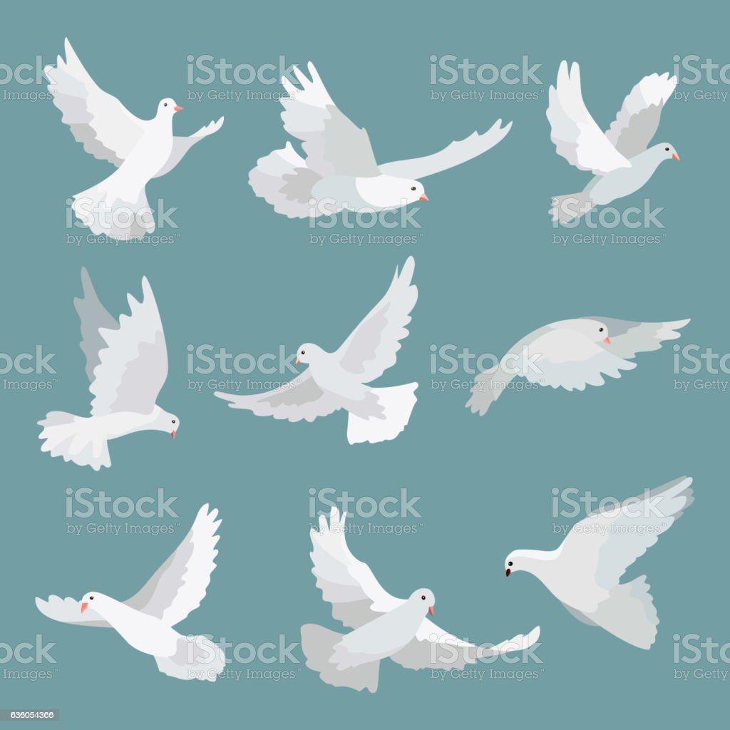Set white doves peace isolated on background. Vector bird illustration. vector art illustration