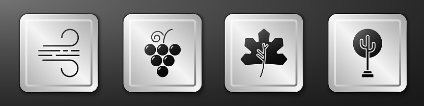 Set Wind, Grape fruit, Leaf or leaves and Tree icon. Silver square button. Vector