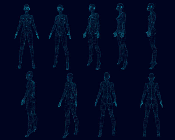 set with a girl body wireframe from different sides. polygonal girl consists of blue lines on a dark background. 3d. vector illustration - wire frame model stock illustrations