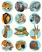 set of icons with wild animals of Africa. Images isolated on white background