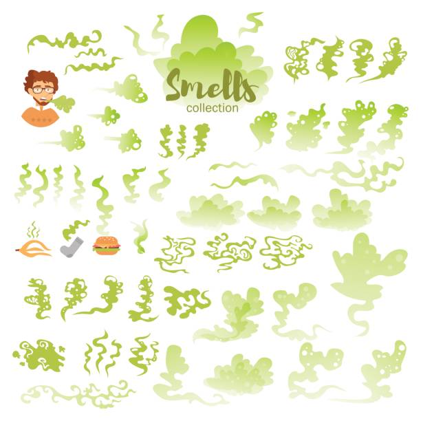 Set with bad smells Set with bad smells. Isolated art on white background. Vector. Flat. Green scented stock illustrations