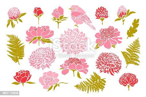 Set with birds and flowers. Peony, chrysanthemum, clover, tulip, fern. Vector illustration.