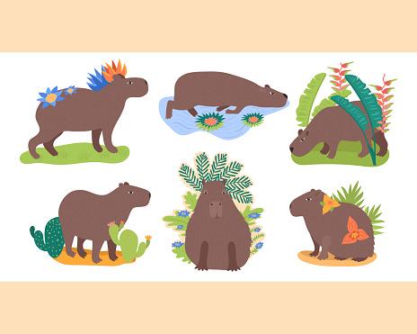 set with capybaras
